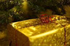 Holiday Fraud Can Ruin Your Christmas Revenues!